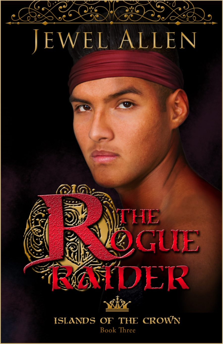 the-rogue-raider-cover-with-border